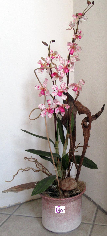 Vaso ceramica spugnata rosa con composizione di orchidee